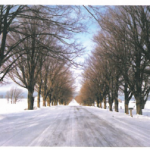 Snowcovered roads generic